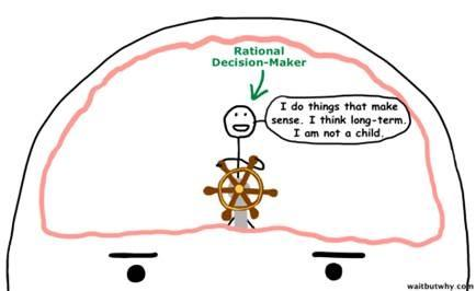 Drawing of the rational decision maker by Tim Urban from Wait but Why, Uitstelgedrag